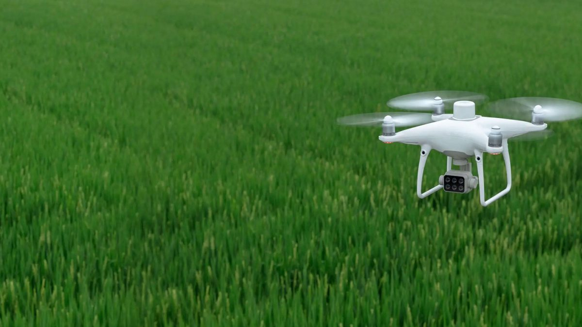 aerial drone farming