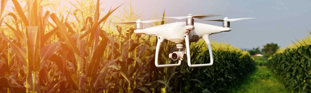 pengecekan lahan dengan drone dji phantom